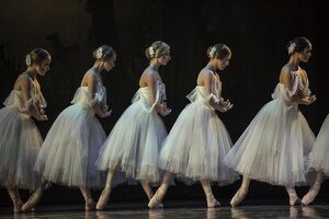 Ballet (Gallery of 42 Items)