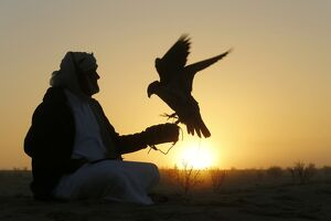 UAE-FESTIVAL-FALCONRY