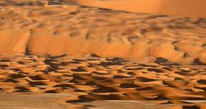 UAE-NATURE-DESERT