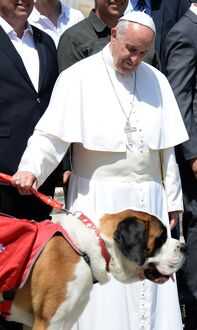 VATICAN-POPE-DOG