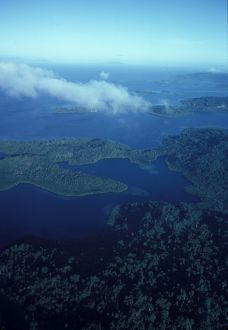 Aerial river view. Solomon Islands, 1979.