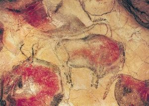artists/prehistoric prehistoric/bisons caves altamira c15000 bc cave painting
