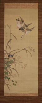 Ducks, flowers and grasses, c.1800-22 (ink and colours on silk)