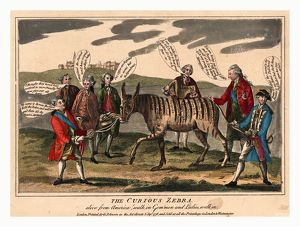 The curious zebra alive from America! walk in gem'men and ladies, walk in, Cartoon