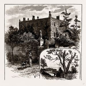 FINCHLEY MANOR HOUSE AND TURPIN'S OAK, UK, engraving 1881 - 1884