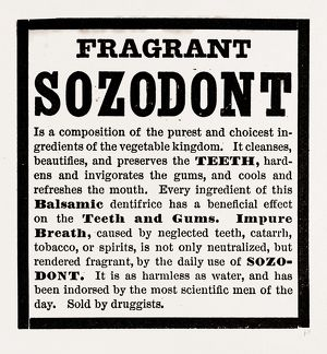 Fragrant Sozodont, 19th century engraving
