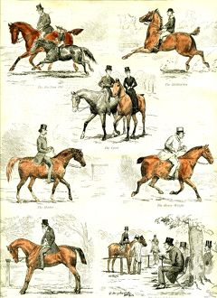 Horsemanship, U.K., 1885, the seven ages of horsemanship