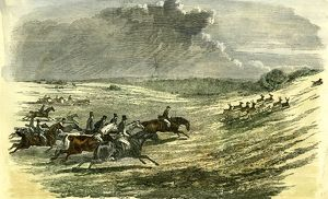Lyndhurst, New Forest, U.K., 1850, chase of a jackal, hunt