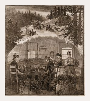 MAKING WREATHS, preparing Christmas Greens, 1880, USA, America, 19th century engraving