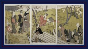 Mimeguri no dote] = [The embankment at Mimeguri], Kitagawa, Utamaro (1753?-1806)