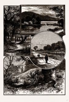 VIEWS IN EPPING FOREST, UK, engraving 1881 - 1884