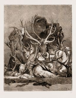 THE WILD GAME OF AMERICA, 1876, HUNTING TROPHIES; ANTLERS