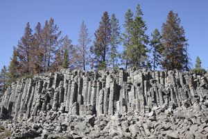 Basalt Columns formed by cooling lava, Yellowstone National Park, Wyoming