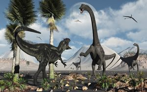 A carnivorous Allosaurus confronts a giant Diplodocus herbivore during the Jurassic