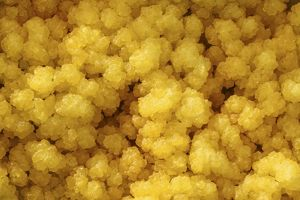 Close-up of yellow salt crystals in the Dallol geothermal area, Danakil Depression