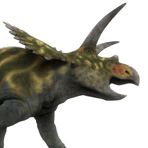 Coahuilaceratops dinosaur, side view