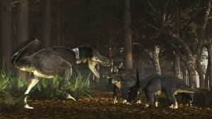 Daspletosaurus confronts a family of Chasmosaurus