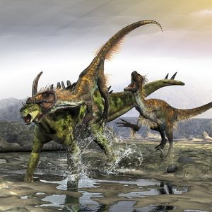 A Gigantspinosaurus is attacked by a pair of Utahraptors