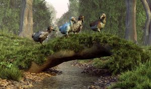 A group of Dodo birds crossing a natural bridge over a stream