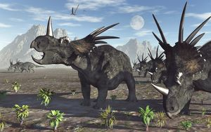 A herd of Styracosaurus dinosaurs during Earth's Cretaceous period