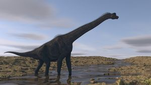 Large Brachiosaurus walking along a dry riverbed