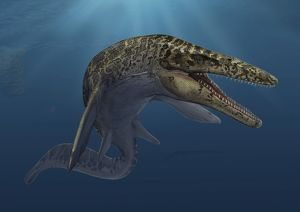 Mosasaurus hoffmanni swimming in prehistoric waters