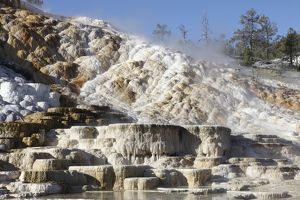 Palette spring and travertine sinter terraces