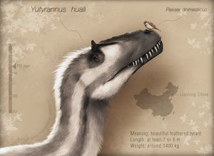 Yutyrannus huali is a feathered tyrannosauroid from the Early Cretacous of China