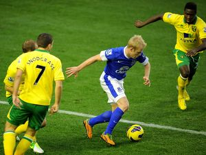 previous seasons/season 2012 13 premier league everton 1 v norwich city 1 goodison park/barclays premier league everton v norwich city