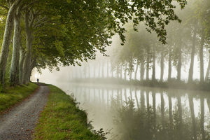 A jogger on the towpath of the Canal du Midi near Castelnaudary, Languedoc-Rousillon