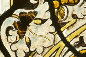 Small tortoishell butterfly (Aglais urticae) on a stained glass window of church
