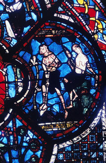 adam eve stained glass chartres cathedral france