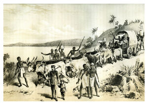 'The Arrival at Lake Ngami', 1883. Artist: Unknown