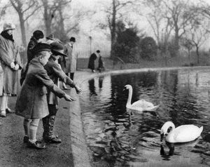 Children feeding the swans on the Serpentine, London, 1926-1927. Artist: Unknown