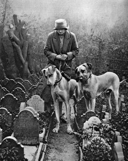 Dog cemetery, Victoria Gate, Bayswater, London, 1926-1927. Artist: Unknown