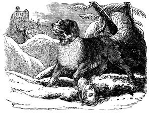 Dog from the Hospice of St Bernard finding a traveller in the snow, c1840. Artist: Unknown