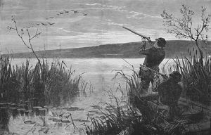 duck shooting saratoga lake 1973 1883 artist