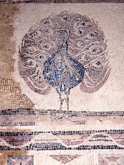 Peacock mosaic from the House of Dionysus, Paphos