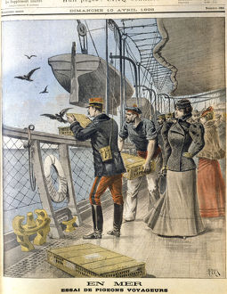 Releasing French army homing pigeons on board the transatlantic liner 'La Bretagne', 1898