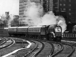 trains/flying scotsman arriving londons marylebone station