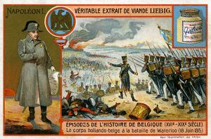Napoleon I and the Dutch-Belgian troops at Waterloo