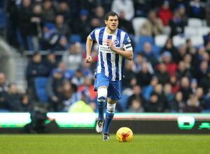 Brighton and Hove Albion v Birmingham City Sky Bet Championship 28/11/2015