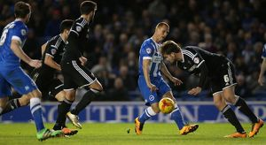 Brighton and Hove Albion v Brentford Sky Bet Championship 05/02/2016