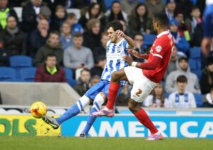 Brighton and Hove Albion v Charlton Athletic Sky Bet Championship 05/12/2015