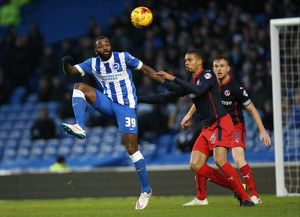 Brighton and Hove Albion v Reading
