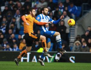 Brighton and Hove Albion v Wolverhampton Wanderers Sky Bet Championship 1/01/2016